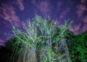 16 největších zajímavostí ostrova Maurícius