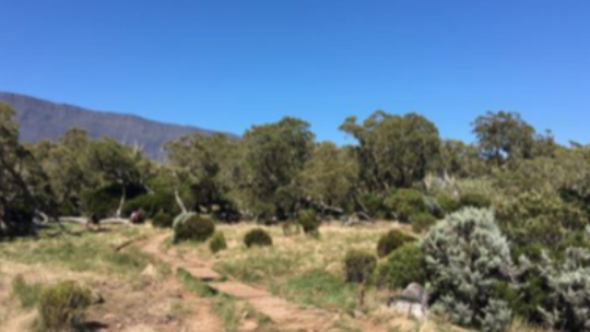 Small Crossing Trekking Program